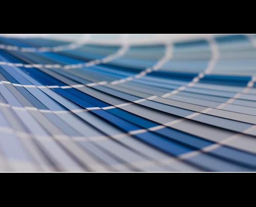 Day 079/365 : Blue by djokosantoso