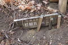 醍醐丸から生藤山への道