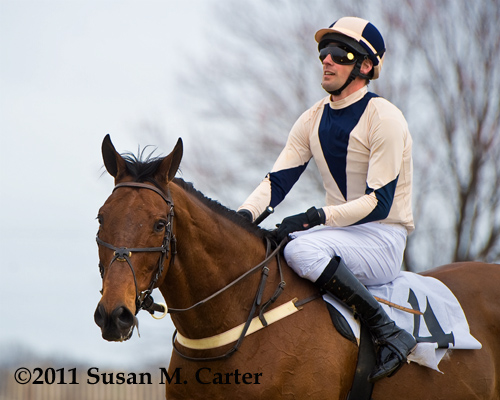 Sur La Tete and Chris Read, steeplechase horse