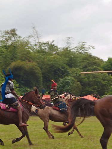 Pasola, horse fighting festival