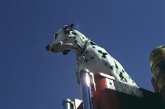 FS 103 Fire Dog