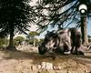 vlcsnap-2011-04-16-20h46m23s242