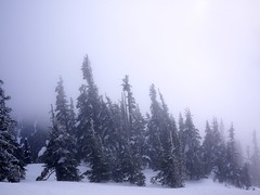 View from our Snow Hike