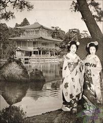77th Kamogawa odori-1956 (kofuji) Tags: kyoto maiko geiko geisha kamogawa pontocho odori