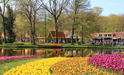 Colorful Keukenhof