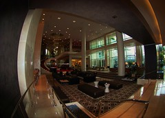 Lobby - W Hotel Hollywood (Renee Rendler-Kaplan) Tags: trip vacation nikon december w earlymorning fisheye lobby socal ugh hollywood trippy whotel 2010 hollywoodcalifornia laist moreorless boulevardofbrokendreams hoorayforhollywood nikond80 winterinsocal lovelylobby reneerendlerkaplan whotelhollywood socalfromatouristseyes orsoiremember butnoonewouldseeyou andthepluginpodswerentworking andweonlyhadsixhangerswhenwecheckedin askedfor25more wherewestayedonourvacation youcouldmakeagrandentrance buthousekeepingcouldvedoneawaybetterjobinoursuite andthetvwasntworking andthepillowswerecloudsofmarshmallowswhenweaskedforhardones andgot4moresoftonesdelivered anditwasaprettynewhotel butcertainlyconvenient anddontaskaboutthedustonthevents andgot4 sowehadtocallthedeskyetagain