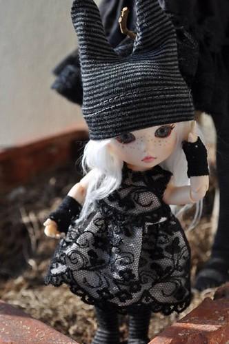 Judy (Pukifée Luna) nouveau visage. 5643134214_05727591dd