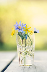 Happy Easter (~ Maria ~) Tags: glass easter spring holidays dof sweden bokeh springflowers happyeaster blueandyellow springbouquet swedishcolors gettyimagesswedenq2 bunchofspringflowers