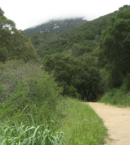 San Ysidro Trail 2