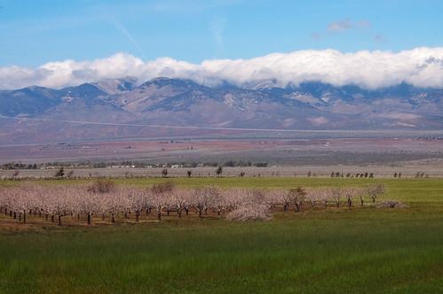 So Cal Road Trip April 2011