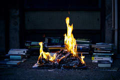 You don't have to burn books to destroy a culture. Just get people to stop reading them. (*Les Hirondelles* Photography) Tags: blue italy night canon dark fire italian italia dof darkness zoom bokeh culture books libri flame ashes challenge notte carta cultura fuoco italiano fiamma pira fahrenheit451 raybradbury fiamme mybooks cenere romanzo citazione stiillife fiammata livido inspiredbyabook projectphotographer leshirondellesphotography youdonthavetoburnbookstodestroyaculturejustgetpeopletostopreadingthem