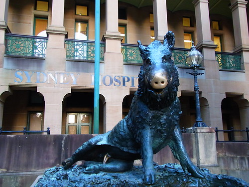 Boar statue 2of2