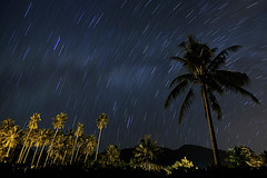 lost time? (paojus) Tags: tree d50 star interestingness nikon nightscape philippines nikond50 davao tarragona startrails davaocity nikonstunninggallery alquiza paojus paojusalquiza paolojustintalquiza paoloalquiza paolojustinalquiza