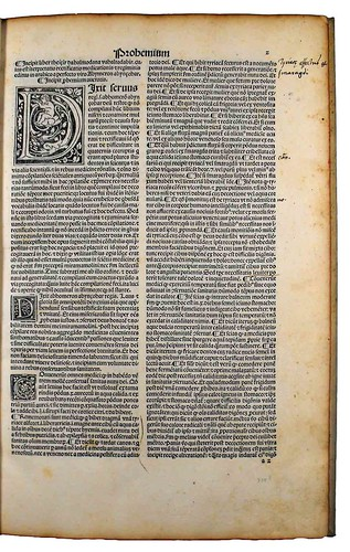 Annotations in Avenzohar: Liber Teisir, sive Rectificatio medicationis et regiminis