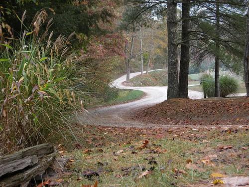 Road in Breathitt County, KY
