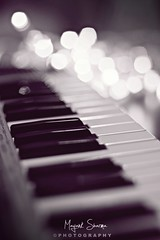 Music is the voice of infinite. [EXPLORE] May 4 2011 (Mayank Sharma renewed :D :D) Tags: red music india white black canon studio keys 50mm lights keyboard shoot dof bokeh delhi piano voice product