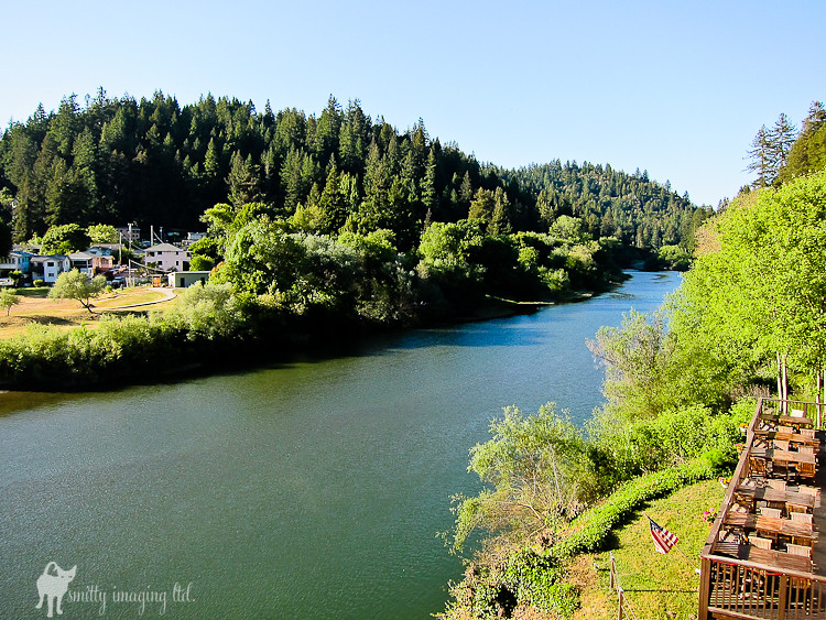 Russian River View
