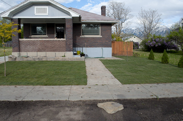 bungalow.grass.957