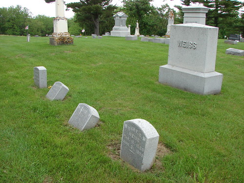 Weiss family plot side view