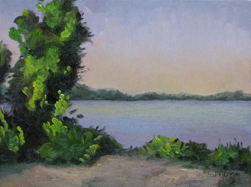 20110602 Potomac River Series III