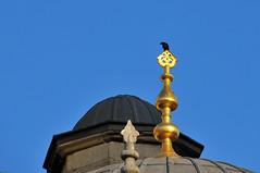 Alemin Kralı (Atakan Eser) Tags: flickr istanbul mosque cami camii karga eminönü yenicami alem kral dsc3153