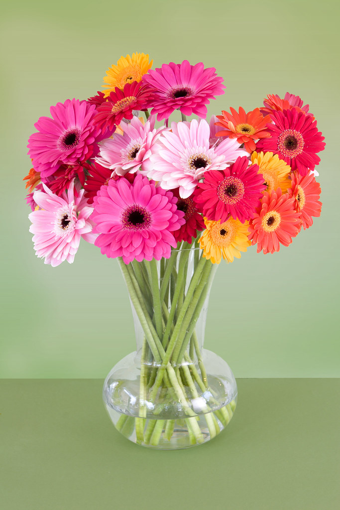 Colorful gerbera Centerpiece