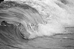 Vague (William.Fni) Tags: canon tube william canon350d vague lacanau ocean lacanauocean fenie williamfenie oceanantlantique