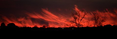 [ Fiamme del cielo - Heaven flames ] DSC_0709.2.jinkoll (jinkoll) Tags: sky clouds sunset red flames trees gloaming swbalcony pano panorama west calabria