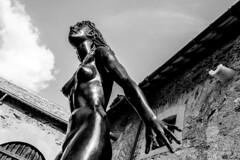 (Gi_shi) Tags: nikon iamnikon nikonitalia d7200 bard fortedibard valdaosta valledaosta aosta italia italy bn bnw bw biancoenero arte art