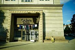 Berlin, Germany (Mark Waldron) Tags: berlin germany sony a7 nikkor nikkorh 28mm f35 frankfurter allee galerie im turm