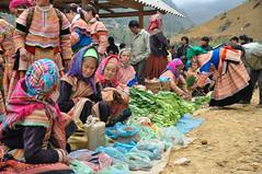 Vendeuses de lgumes Hmongs Fleurs (Nijule) Tags: costume market femme vietnam asie march hmong lgume 2011 vendeuse cancau flickrchallengegroup flickrchallengewinner hauttonkin