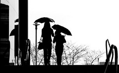 (. Jianwei .) Tags: streets wet rain silhouette vancouver umbrella mood  a500 jianwei station  waterfront kemily absoluteblackandwhite