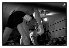 20110326_FREE-FIGHT_0140 (Dresseur d'images) Tags: freefight sportloisirs