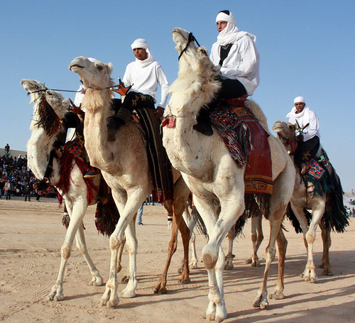 110401 Diplomats discover charm of Tunisian Sahara 05   دبلوماسيون يكتشفون سحر الصحراء التونسية   Les diplomates découvrent le charme du Sahara tunisien