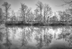 .I...II.III....I (ar.t) Tags: bw reflection water alberi soft italia atmosphere tones acqua riflessi hdr riflessione laghi tripleniceshot artistoftheyearlevel4 artistoftheyearlevel5 artistoftheyearlevel7 artistoftheyearlevel6