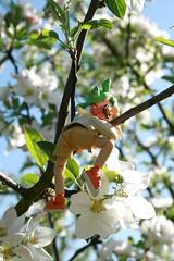 Yotsuba & bees (K'farnam) Tags: toys yotsuba cherryblossomtree artoys revoltech