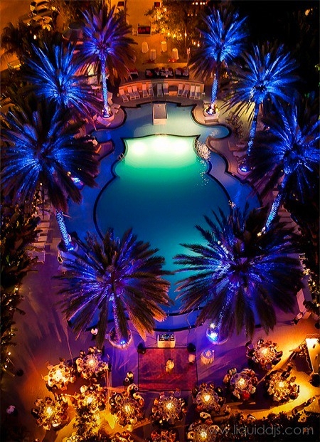 The Raleigh Hotel uplighting by Liquid DJs, palm trees uplighting