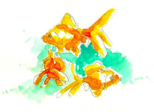 goldfishblog