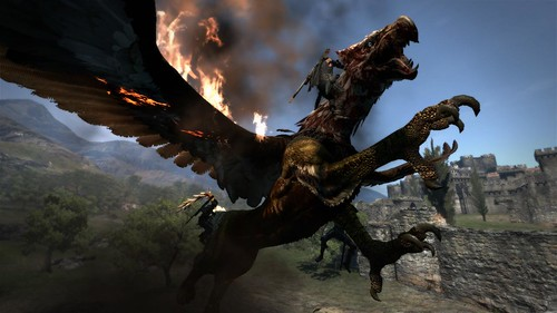 Dragon's Dogma 06