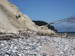 IMG_0562.JPG (RiChArD_66) Tags: kreidefelsen rgen strandkreidefelsenrgenstrand