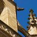 Collection Ariège - Grand Site de Midi-Pyrénées ( Mirepoix - Détail cathédrale Saint Maurice)