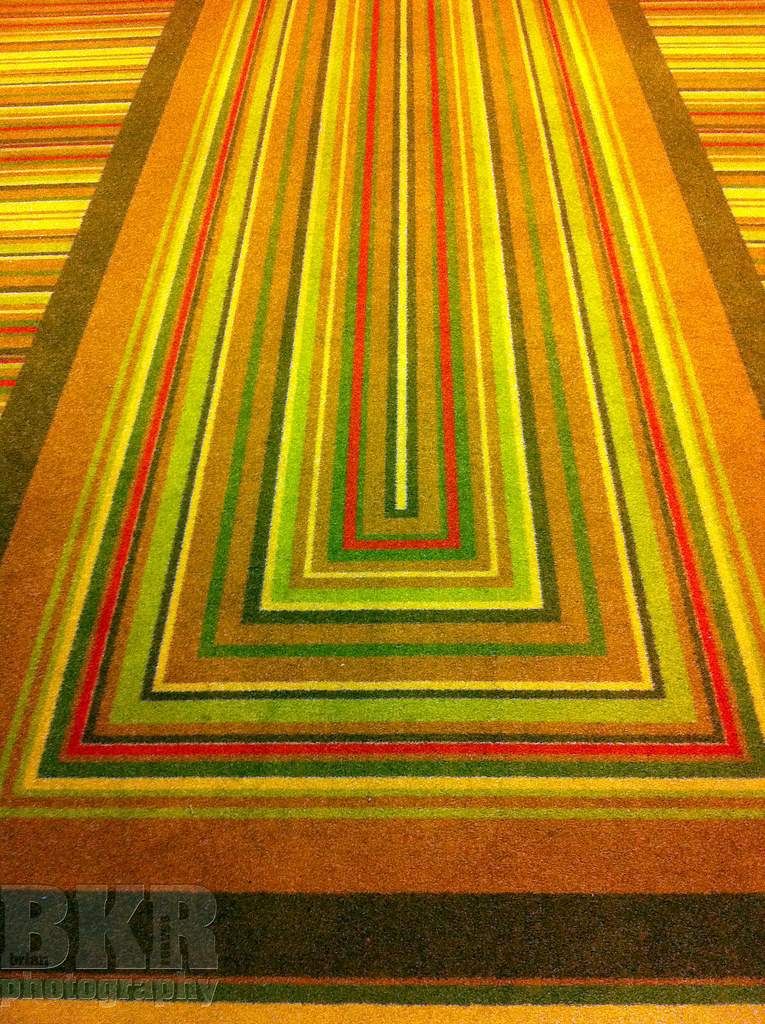 Day103 /365 4/13/11 Hotel Extract Carpet
