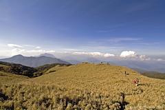 Tawangan Group @ The Grassland (Lenareh) Tags: mountain climb mms philippines grassland benguet mtpulag kabayan cordilleraadministrativeregion metropolitanmountaineeringsociety lenareh dwarfbamboos tawangan mtpulagnationalpark