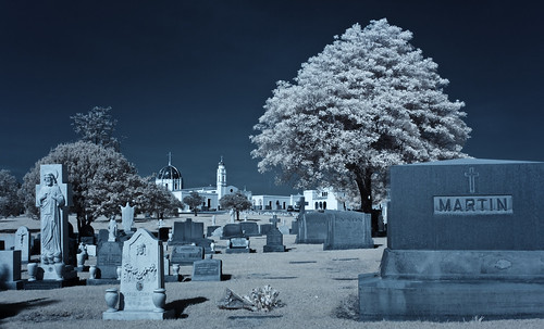 Holy Cross Cemetary (Infrared)