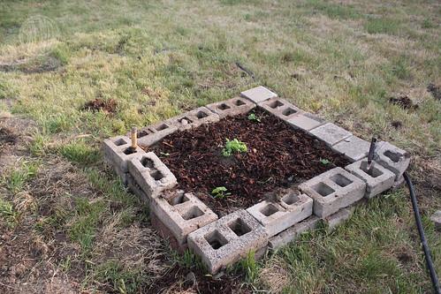 raised brick garden