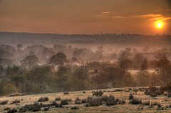 Sunrise with mist over the valley (olicanae) Tags: light sky mist sunrise nikon yorkshire d300 18200mm photmatixpro4