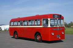 Portrait of a Burlingham Reliance. (Renown) Tags: heritage buses cobham preserved safeway coaches preservation dunsfold reliance aec safeguard burlingham singledecker 200apb