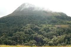 Mt. Pesse - Mt. Namuli, Mozambique