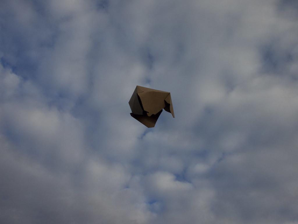 Kite 3.1