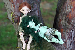 6 (Lynxia~) Tags: dolls amy meeting luv bjd ante mnf unoa soulkid narae zaoll pukifee